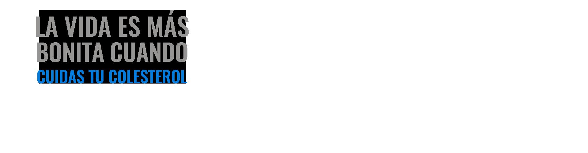 SLIDER-TEXTO